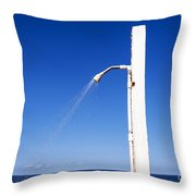 Water Conservation Throw Pillow