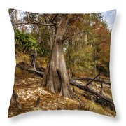 Water Cypress Throw Pillow