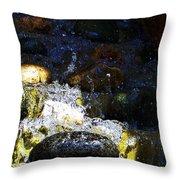 Water Dancer 4  Throw Pillow