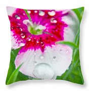 Water Diamond On White Throw Pillow