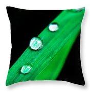 Water Diamonds 14 Throw Pillow