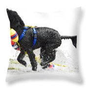 Water Dog 7 Throw Pillow