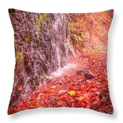 Water Dripping On The Rock Wall Throw Pillow
