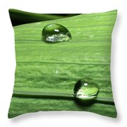 Water Droplet On A Leaf Throw Pillow