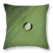 Water Droplet On Green Leaf Throw Pillow