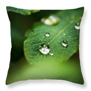 Water Droplets Throw Pillow by Adnan Bhatti