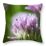 Water Droplets On Chives Flowers Throw Pillow