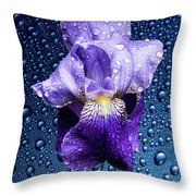Water Drops On Purple Iris Throw Pillow