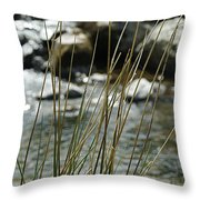 Water Flowing 1 Throw Pillow