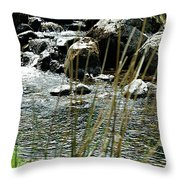 Water Flowing 2 Throw Pillow