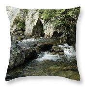 Water Flowing 5 Throw Pillow
