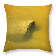 Water Flowing Over Submerged Boulder Throw Pillow