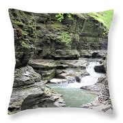 Water Flowing Through The Gorge Throw Pillow