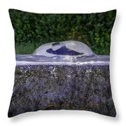 Water For The Lost Throw Pillow