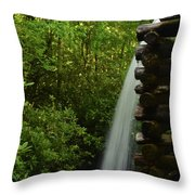 Water From The Flume Throw Pillow