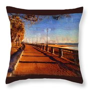 Water Front Park  Throw Pillow