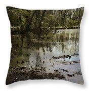 Water Garden Lake View Throw Pillow