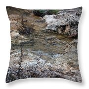 Water Going To The Falls Throw Pillow