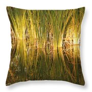 Water Grass In Sunset Throw Pillow