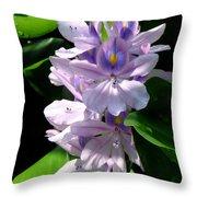 Water Hibiscus Throw Pillow