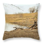 Water Hole 006 Throw Pillow