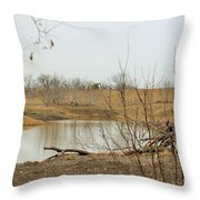 Water Hole 007 Throw Pillow