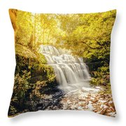 Water In Fall Throw Pillow