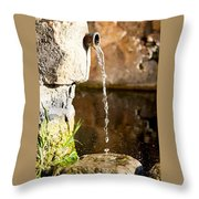 Water In Nature Throw Pillow
