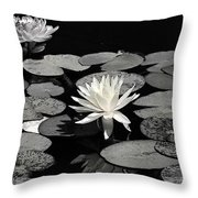 Water Lilies In Black And White Throw Pillow