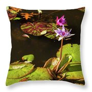 Water Lillies At Central Park Throw Pillow