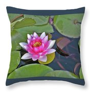 Water Lilly  And Lilly Pads Throw Pillow