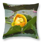Water Lilly Throw Pillow by Diane Greco-Lesser