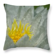 Water Lilly Morph Throw Pillow