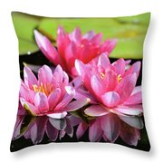 Water Lilly Triplets Throw Pillow