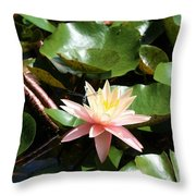 Water Lilly With Dragonfly Throw Pillow