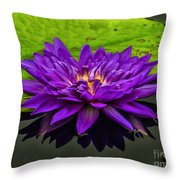 Water Lily 15-2 Throw Pillow