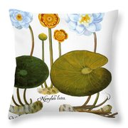Water Lily, 1613 Throw Pillow