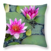 Water Lily #2 Throw Pillow