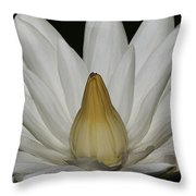 Water Lily 23 Throw Pillow