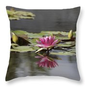 Water Lily 3 Throw Pillow