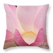 water lily 32 Pink Lotus Macro Throw Pillow