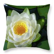 Water Lily 3437 Throw Pillow
