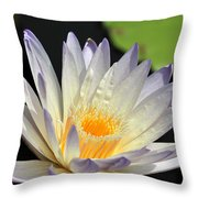 water lily 48 Green Smoke Throw Pillow