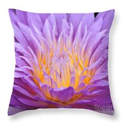 water lily 55 Ultraviolet Throw Pillow