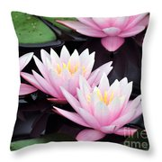 water lily 91 Sunny Pink Water Lily Throw Pillow