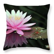 water lily 92 Sunny Pink Water Lily with Lily Pad Throw Pillow
