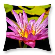 Water Lily After Rain 2 Throw Pillow