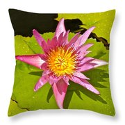 Water Lily After Rain 3 Throw Pillow