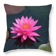 Water Lily - Afternoon Delight Throw Pillow