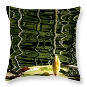 Water Lily Budd Throw Pillow